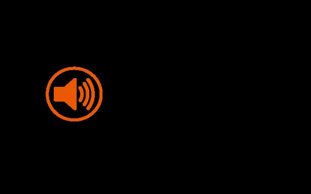 SoundStore.lv